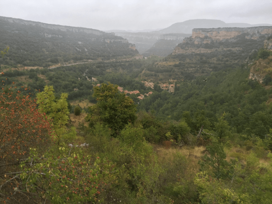 Typical geography of Day 2 – we went down and up a few of these hills several times…