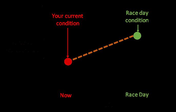 How To Build A Training Plan For Your Marathon or Half Marathon 1