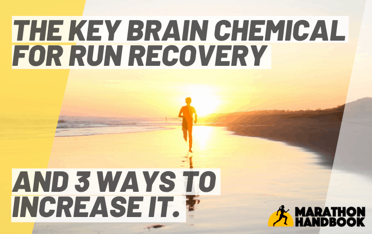 The Key Brain Chemical for Run Recovery (And 3 Ways To Increase It)