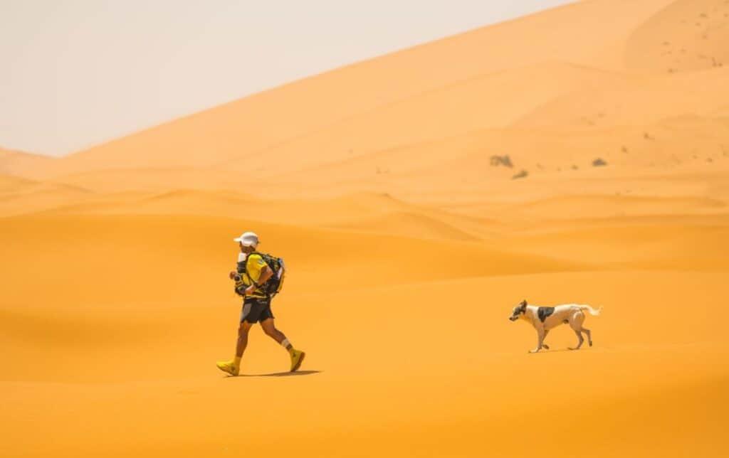 The Ultimate Desert Stage Race: Marathon des Sables 4